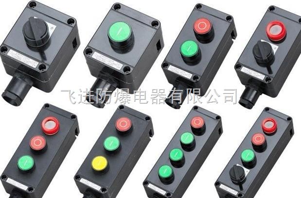 防爆荧光灯,防爆配电按钮/防爆接线盒防爆防腐操作柱