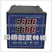 工业PH/ORP计/在线式PH计/在线PH仪  型号:TRH-1101