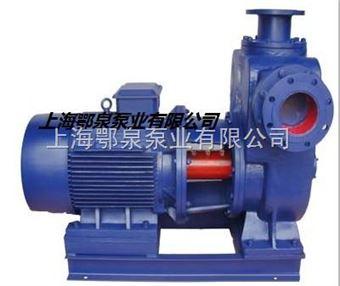 ZS型双吸式自吸泵