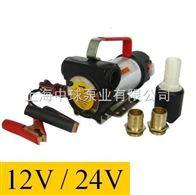 DY12V,24V直流电动抽油泵
