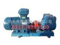 100YPB-100滑片泵