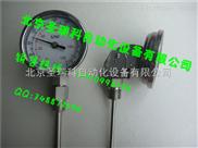 表盘式双金属温度计WSS-482