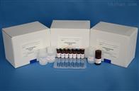 猪主要组织相容性复合体Ⅰ类检测试剂盒