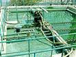 衡陽市工業汙水處理betway必威手機版官網工藝,大型汙水處理betway必威手機版官網工程公司