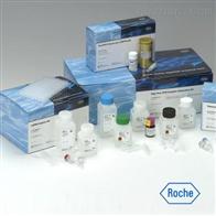 鸡弓形虫循环抗原检测试剂盒