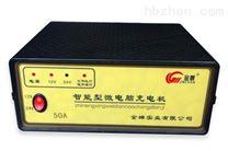 智能家居型微电脑充电机、蓝格尔蓄电池充电器,50A JDCQ-0012