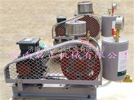 HCC-80sHCC80S回转式鼓风机