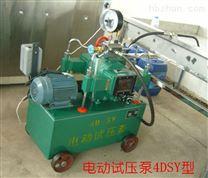 壓力容器試壓泵