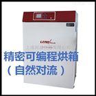 精密可编程烘箱(强制对流)LT-DBX23F/LT-DBX60F/LT-DBX120F