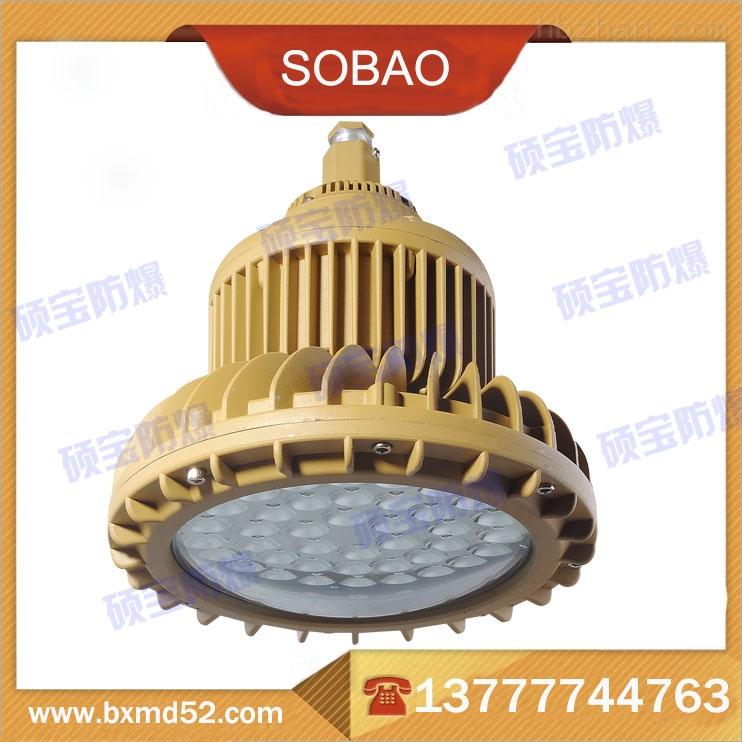 喷漆LED防爆灯50W价格