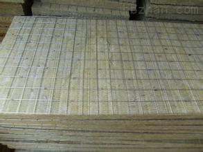 双面插钢丝网岩棉板
