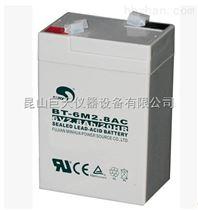 BT-6M4.0AC电子秤电池(赛特厂家)批发