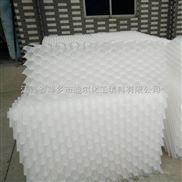 DN50-塑料斜管填料