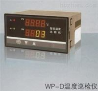 WP-D804-02-23-HHLWP-D804-02-23-HHL智能温度巡检仪选型说明