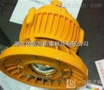 照明灯BAD85-30W壁式免维护防爆灯ExdⅡCT6