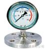 HD-YM卫生型隔膜压力表