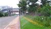 广东广西海南自动浇水灌溉系统